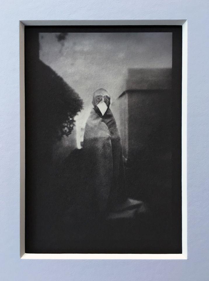 Kris Dahl - Platinum Palladium Print
