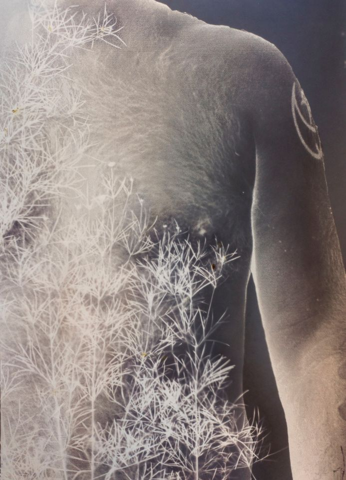 Matel Rokke - Archival Pigment Print/ Lumen Print