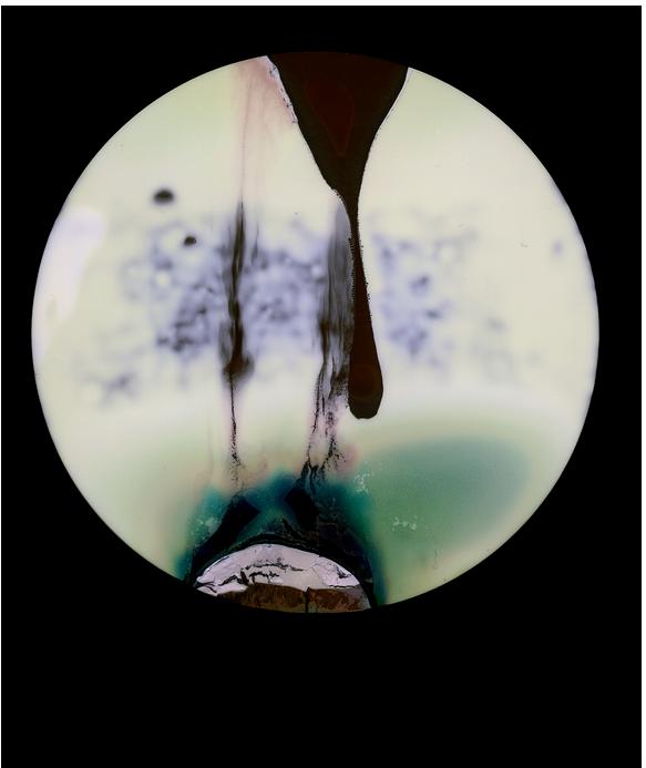 Rebecca Hackemann - Cameraless polaroid