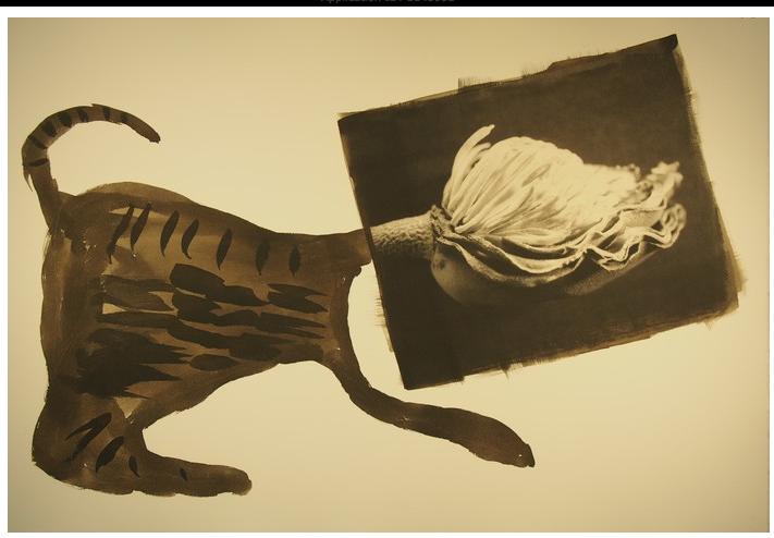 Roger Matsumoto - Palladium Monoprint