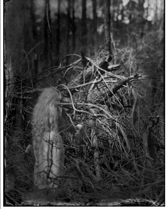 Mary Anne Mitchell - Collodion on Aluminum