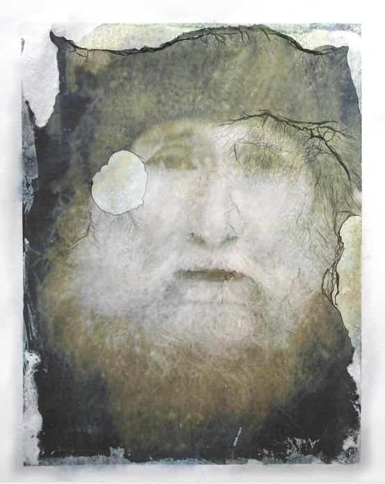Diane Fenster - Pigment image transfer