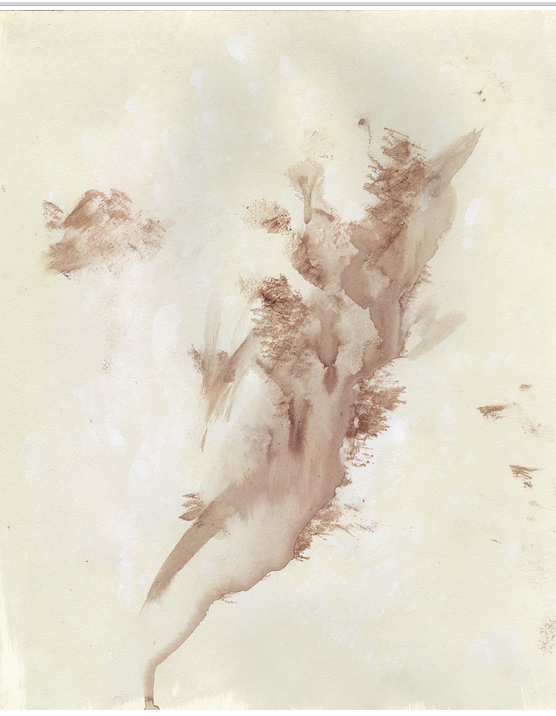 Sloane Volpe - Gum Bichromate, Watercolor, Blood