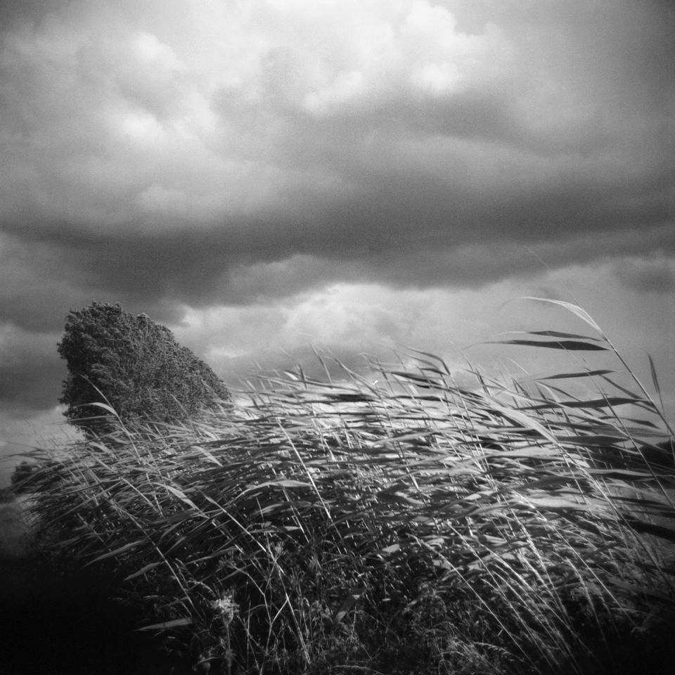 Chuck Baker - It Is Coming, Holga