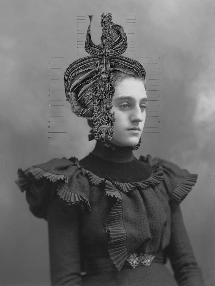 Laura J. Bennett - Dames of Anatomy