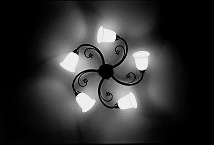 Austria Light