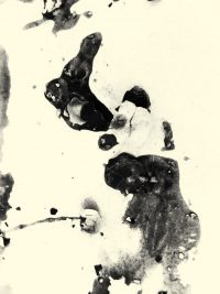 Irene Greenberg