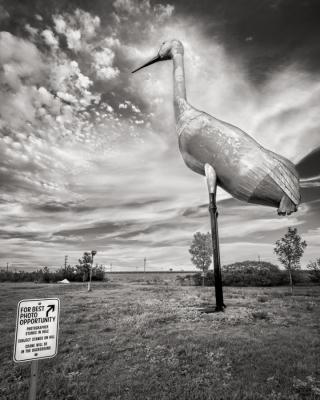 World's Largest Sandhill Crane, Steele, North Dakota