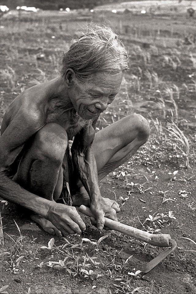 Montagnard Farmer