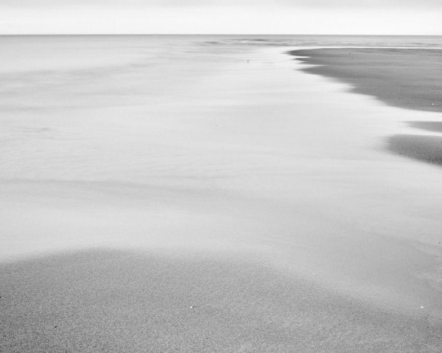 Lone Gull On The Seashore