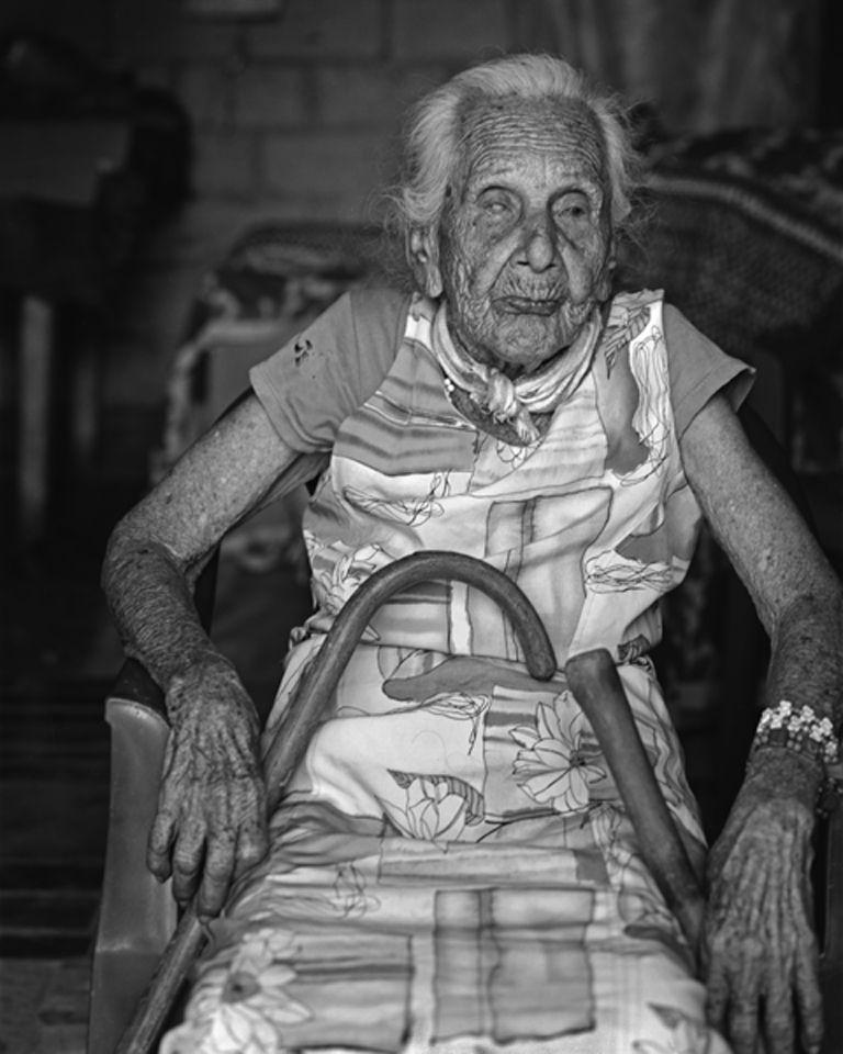 Rosa, 105