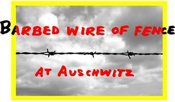 Auschwitz-image-for-Bobby