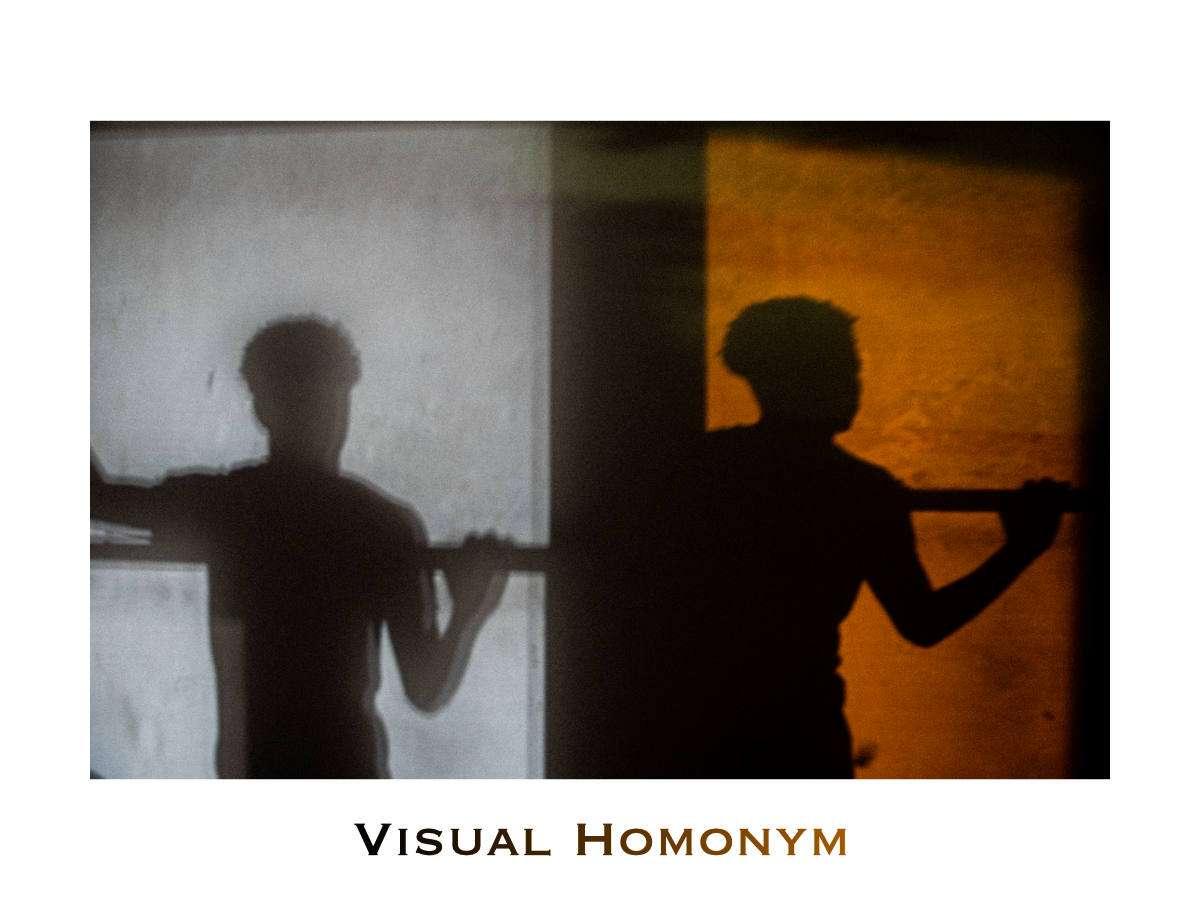Visual Homonym